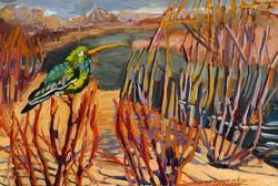 """""""Coronado Bird December"""""""
