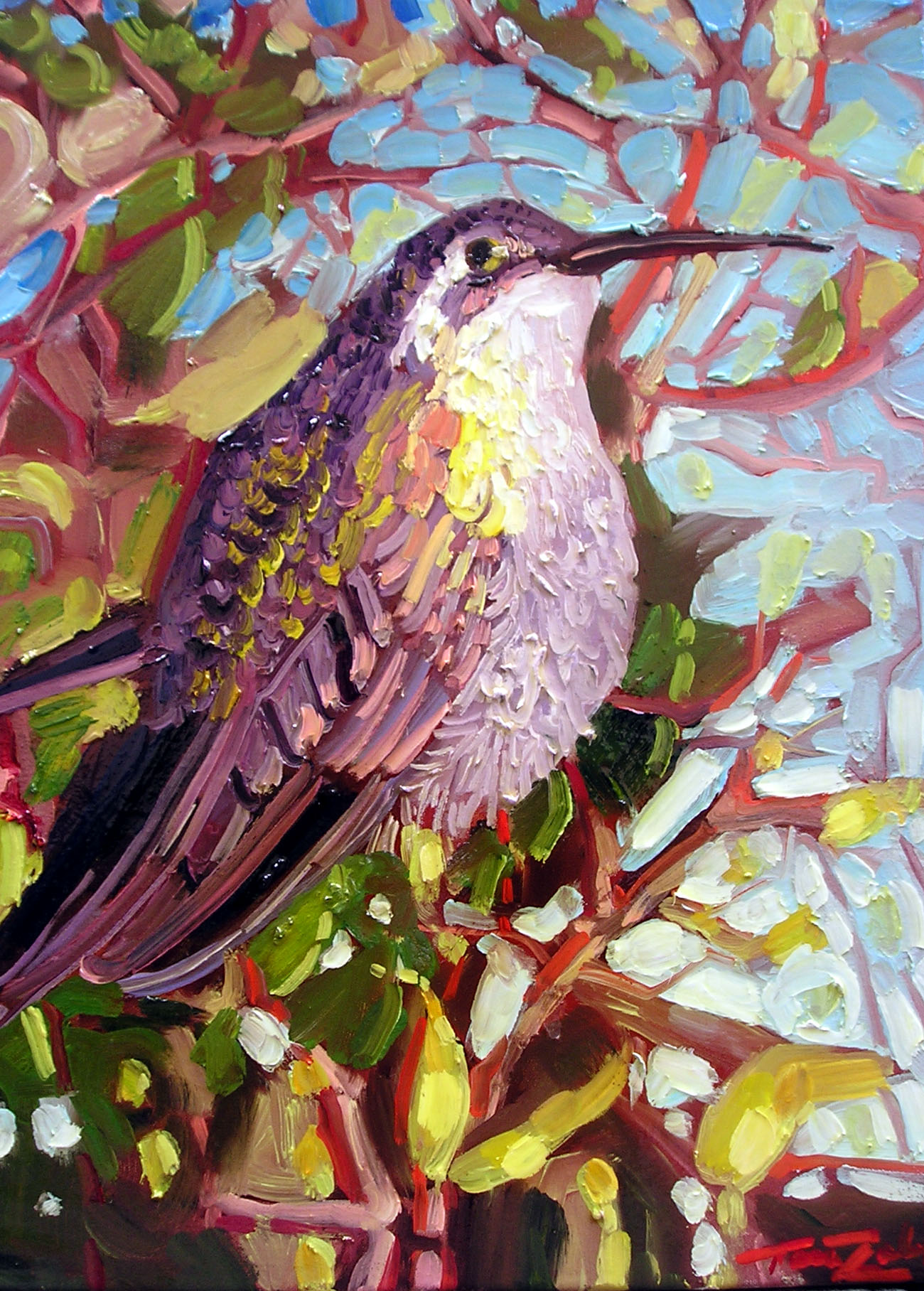 """Speckled Hummingbird"""