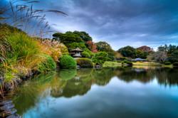 shinjuku gyoen park, tokyo, japan