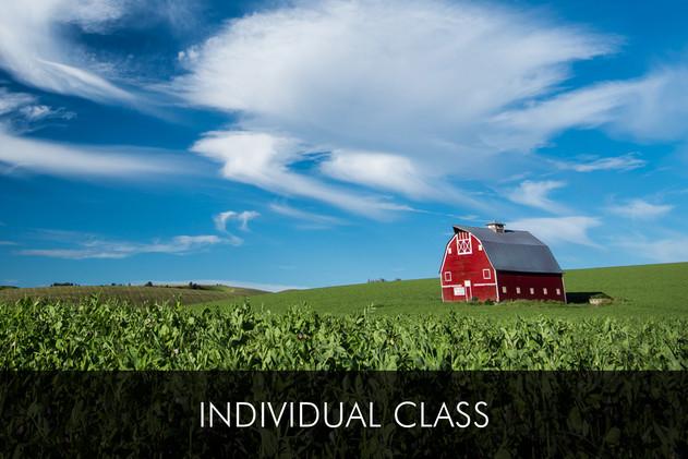 Individual 1:1 photo class
