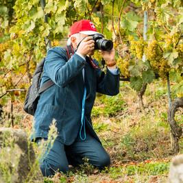 2000_pb-161008-Vineyards-photowalk-0818.