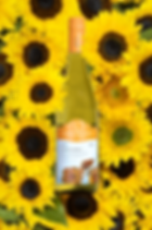 Bin-65-Chardonnay.png
