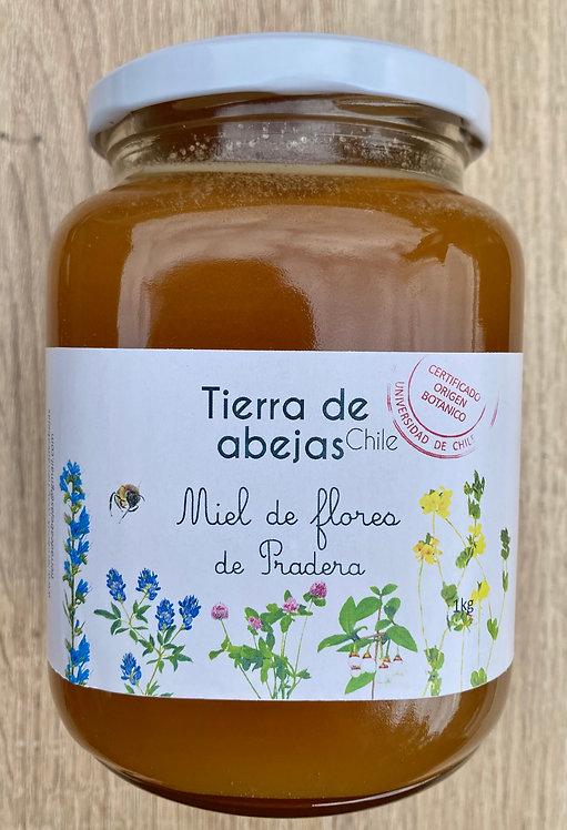 Miel Flores de Pradera 1000grs