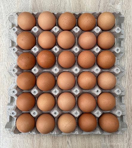 30 huevos Gallinas libre pastoreo