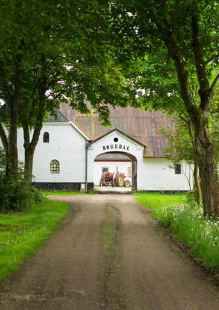 2018 Event Scenography - Food Studio, Denmark