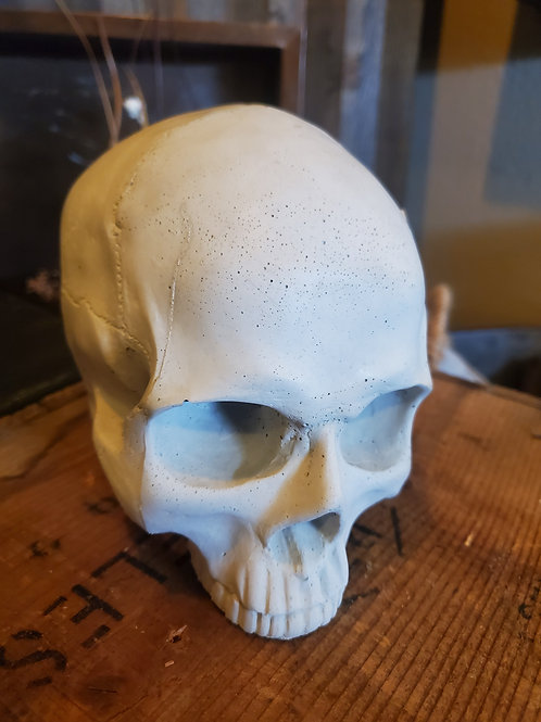 "Locally Handmade Cement Skull! Approx 6"" tall"