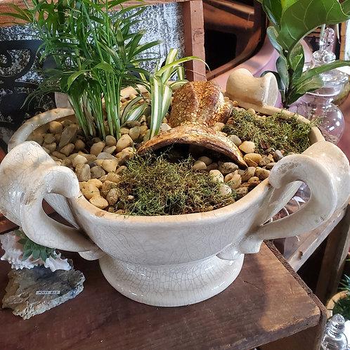 "Planted Bowl / Clawfoot - 14"" wide x 7 1/2"" tall pot"