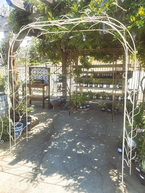 """Iron Branch Arbor - 71 1/2"""" wide (inner stakes) x 7' wide (outer stakes) x 85"""" h"""
