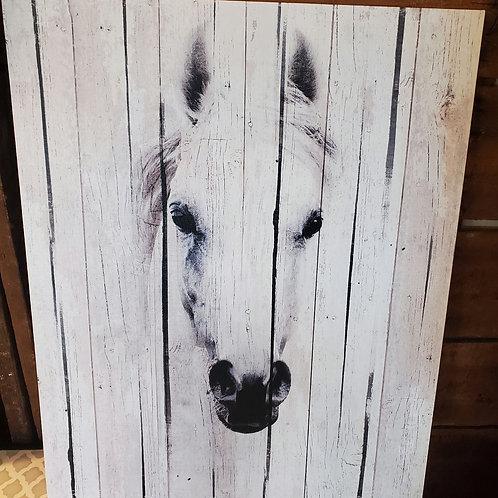 "Horse Canvas 16"" x 20"""
