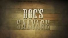 Doc's Salvage