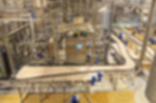 Manufacturing plant, conveyor system