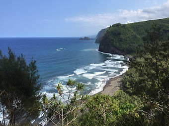 Pololu Valley Overlook with Pali  Beach