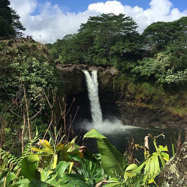 Rainbow Falls Hilo Hawaii Big Island Fan