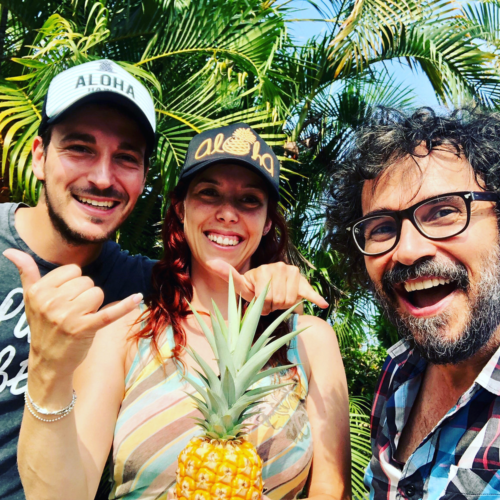 These guests from Europe had fun picking their own pineapple in 2018