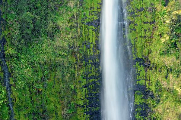 Akaka Falls Big Island Hawaii.jpg