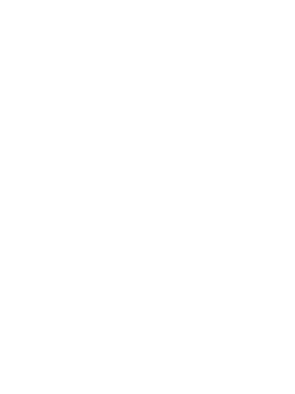 Floral7_white.PNG