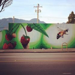 Raspberries and a bee
