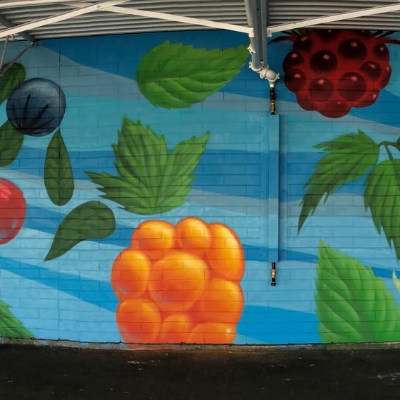 Hastings undercover mural