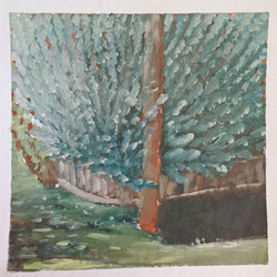 Tree and ditch