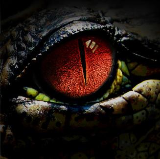 Rudder_gator eye2_LS.jpg