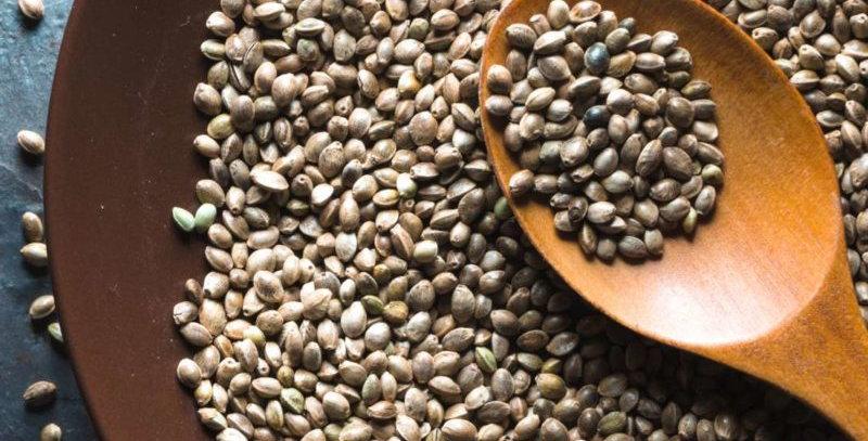 Hemp Seeds | 100gms, 200gms