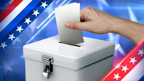 Primary Election Options