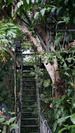 Khao Sok Khao Lak Tree House_09