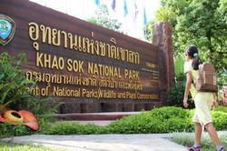 Khao Sok Khao Lak Tree House_10
