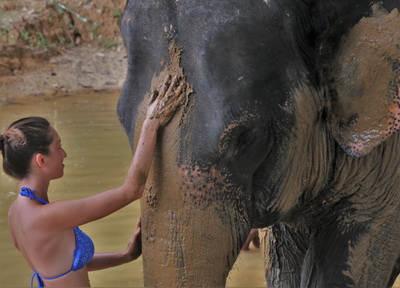 Elephant Sanctuary_3.jpg