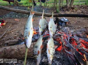 Khao Sok Lake_28.JPG