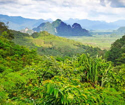 Khao Sok View Point.jpg