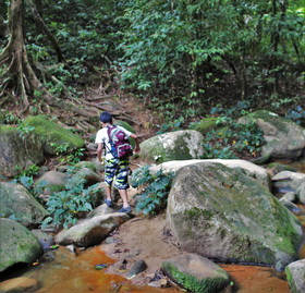 Khao Sok Trekking_2.jpg