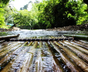 bamboo rafting_4.jpg
