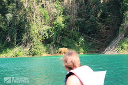 Khao Sok Lake_34