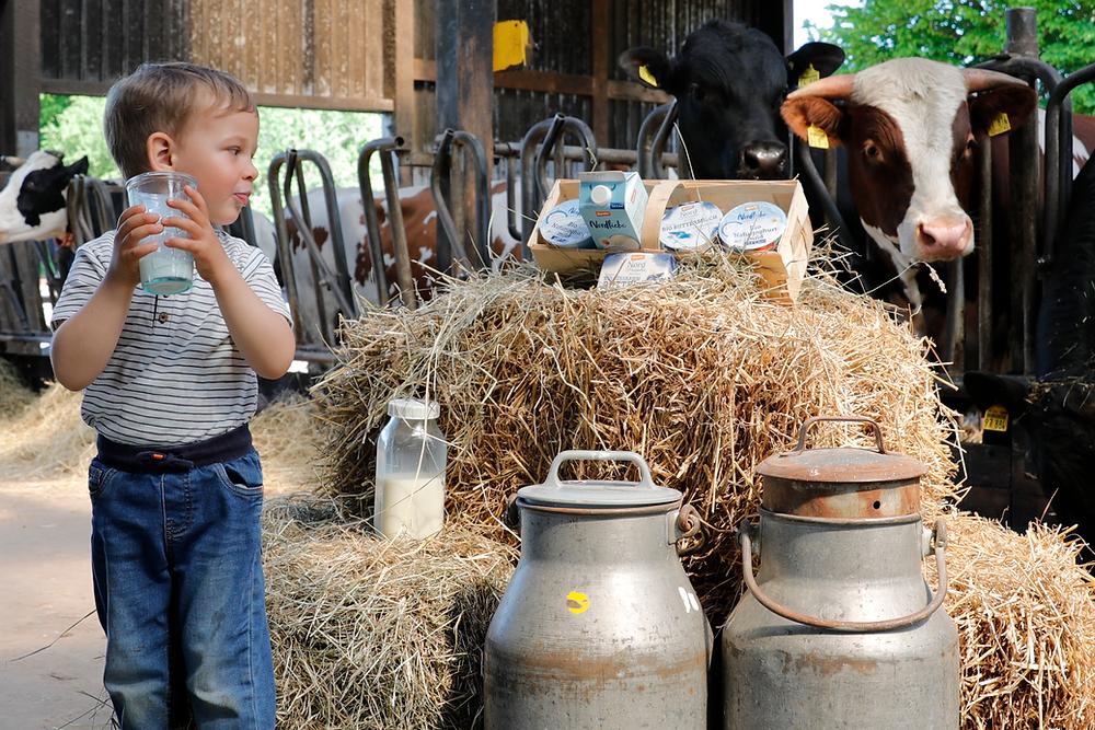 Hof Achtern Diek – Junge mit Kuh und Milchkannen im Stall
