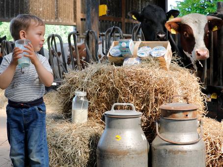 Fotografie auf dem Bauernhof – Kinder, Tiere und ganz viel Wohlfühlen