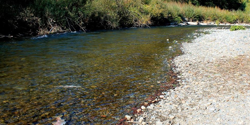 Come Explore Cedar River Natural Areas