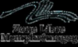 logo zone libre moyen noir.png
