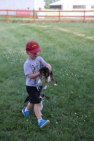 2021-06-19 Beagles Willow Buddy (30).JPG