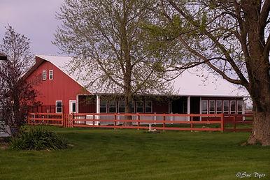 Dog Breeder - Dyer Farms - Iowa