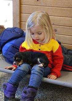 2021-02-28 Beagles Mia 6.jpg