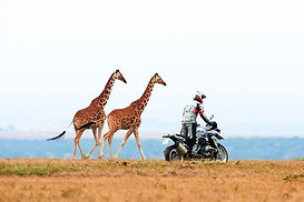 101012-2013-bmw-r1200gs-48_edited.jpg