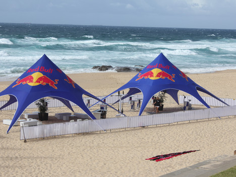 Red Bull January 2012