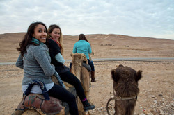 A camel ride in the desert - Israel