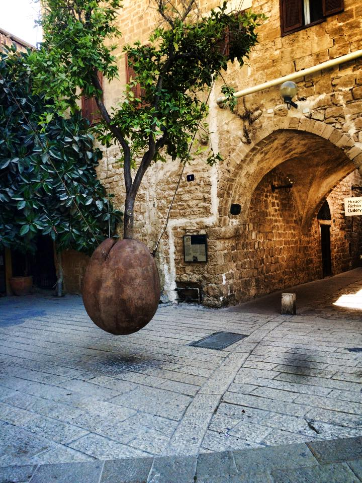 The hanging Orange tree in Jaffa
