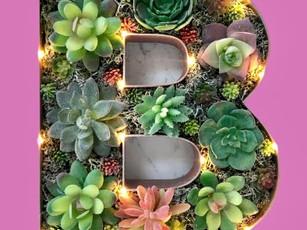 Dollar Tree DIY Decor:  Succulent Light up Monogram Letters