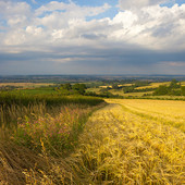 Warwickshire Photographs