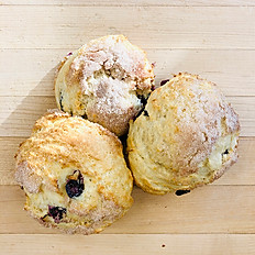 APPLE CRANBERRY SCONE