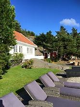 4_solstoler_mot_sjøen.jpg