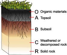 201007_soil_profile image.jpg